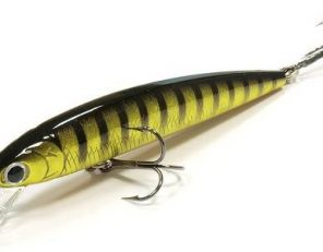 flash_minnow_80sp-242_500x300
