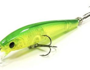 flash_minnow_tr_55-133_500x300